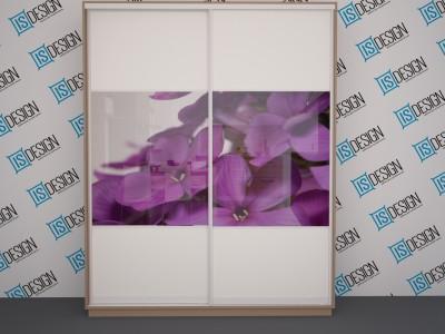Шкаф-купе двухдверный Виолет (200x250x60)
